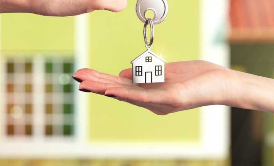What Does Everyone Need To Know About Buying A Home?
